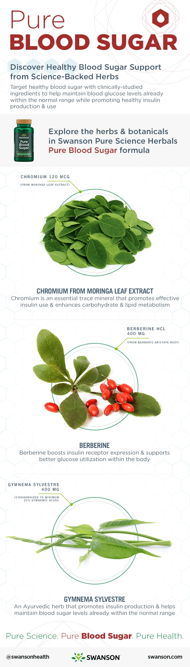 Herbs for Blood Sugar Infographic