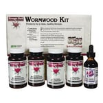 Kroeger Herb Wormwood Kit