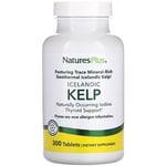 Nature's Plus Kelp