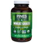 Pines International Wheat Grass