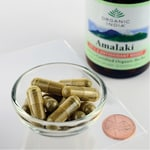 Organic India Amalaki Vitamin C & Antioxidant Boost