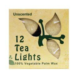 Aloha BayPalm Wax Tea Light Candles Cream Unscented