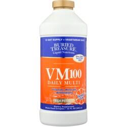 Buried Treasure VM-100 Complete