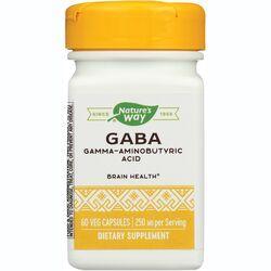 Enzymatic TherapyGABA