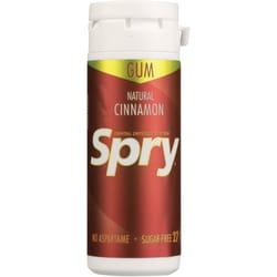 XlearSpry Cinnamon Chewing Gum - Sugar Free