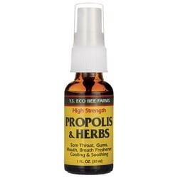 Y.S. Eco Bee Farm High Strength Propolis & Herbs Throat Spray