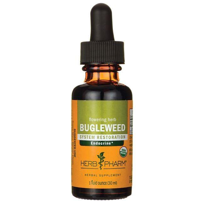 Herb PharmFlowering Herb Bugleweed