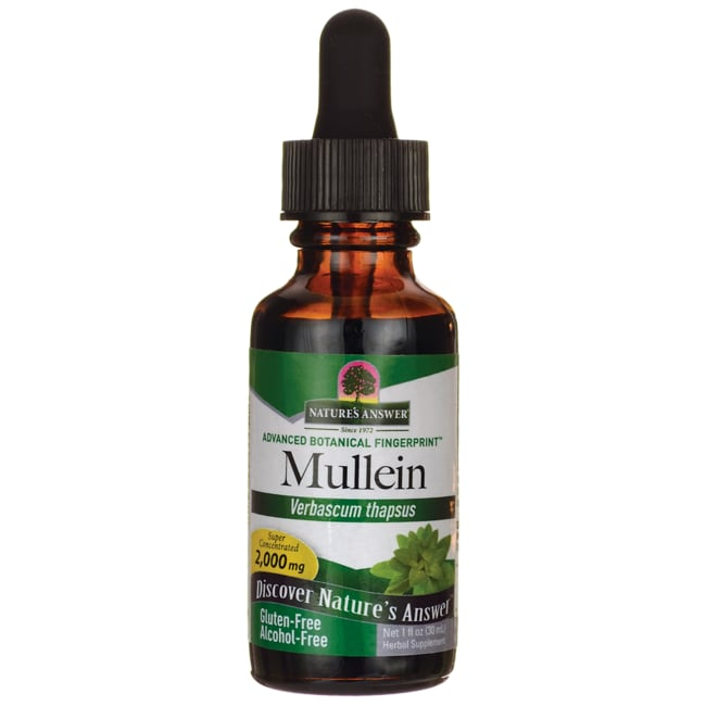 Nature's Answer Mullein Leaf Alcohol Free