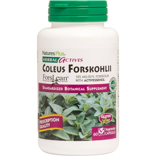Nature's Plus Coleus Forskohlii