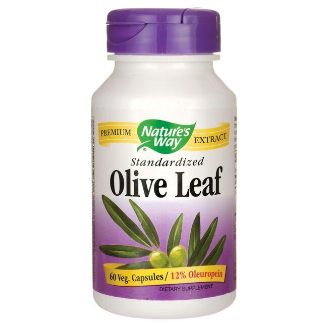 Nature S Way Olive Leaf Standardized