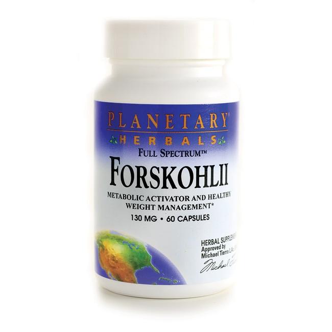 Planetary Herbals Full Spectrum Forskohlii