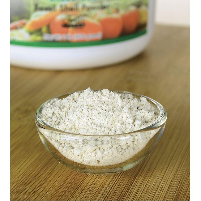 Swanson Healthy Home Diatomaceous Earth Fossil Shell Powder 100% Pure Food Grade Close Up